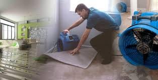 Auckland carpet cleaner after burst pipes