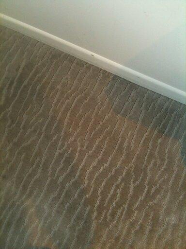 Silverdale carpet cleaner
